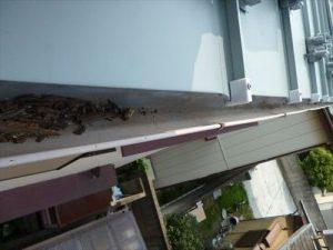 東京都江戸川区 H様邸 ガルバリウム鋼板タテ平葺き 屋根葺き替え工事 雨どい清掃